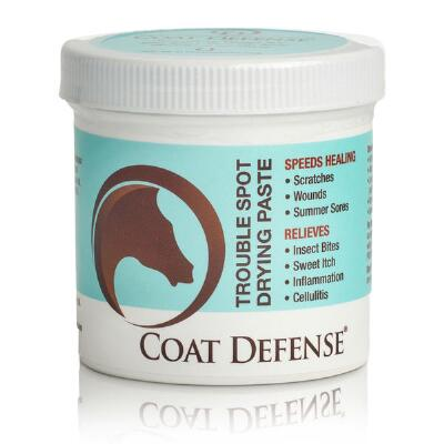 Coat Defense Trouble Spot Dry Paste 24 oz