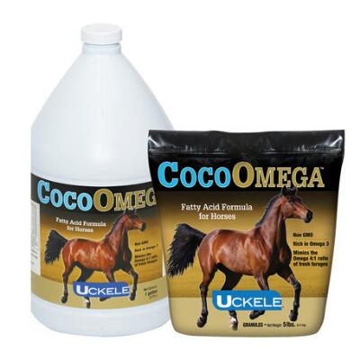 CocoOmega Oil Gallon