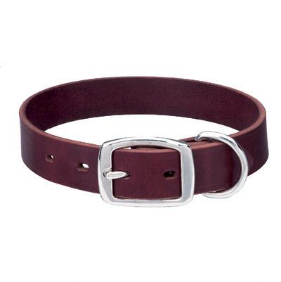 Heritage Choice Leather Dog Collar