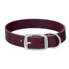 Dog Collar Heritage Choice Leather