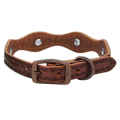 Sundance Dog Collar Medium