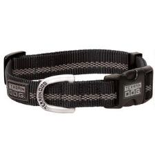 Snap-n-Go Reflective Dog Collar - TB