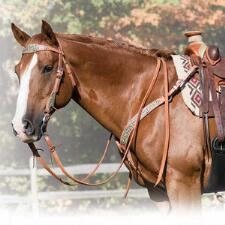 Stacy Westfall Cowgirl Spirit Tack - TB
