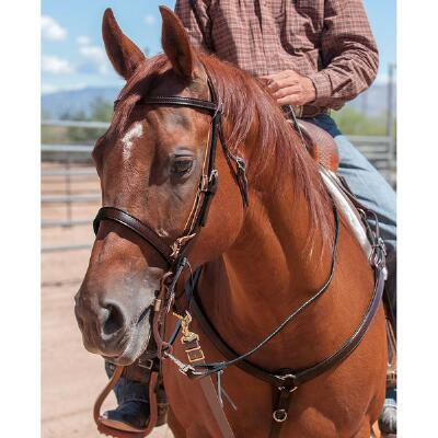 Trailhead Browband Headstall