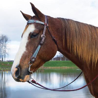 Savannah Browband Headstall Horse