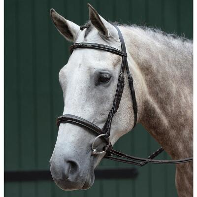 Collegiate Essential Fancy Stitched English Bridle