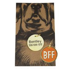 BFF Pet Engraveable Collar Charm - TB