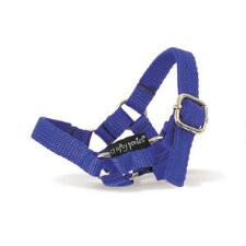 Crafty Ponies Play and Learn Toy Nylon Halter - TB
