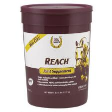 Horse Health Reach Joint Supplement 2.815 lb - TB