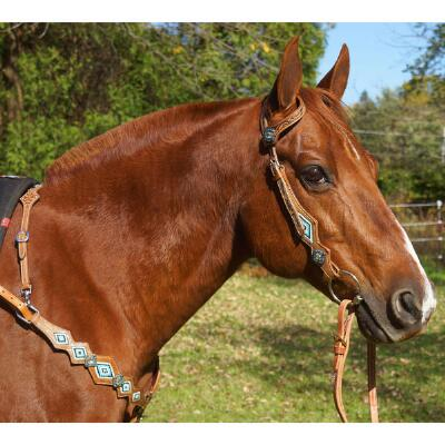 Big Country Tack Bernadino Single Ear Headstall