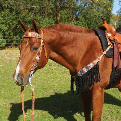 Big Country Tack Courtland Midnight Serape Browband Headstall