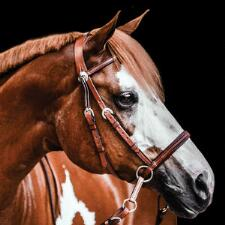 Bitless Bridle Western Headstall Leather