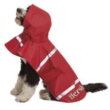 Custom Dog Rain Jacket with Name - TB