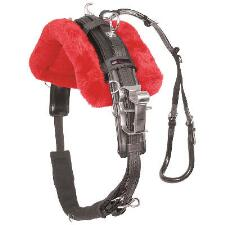 Walsh Pony Race Harness - TB