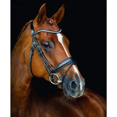 Schockemohle Malibu Antatomic Dressage Bridle