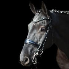 Schockemohle Milan Anatomic Dressage Double Bridle - TB