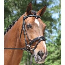 Red Barn Italia Pirouette Dressage Bridle - TB