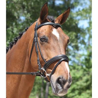 Red Barn Italia Pirouette Dressage Bridle