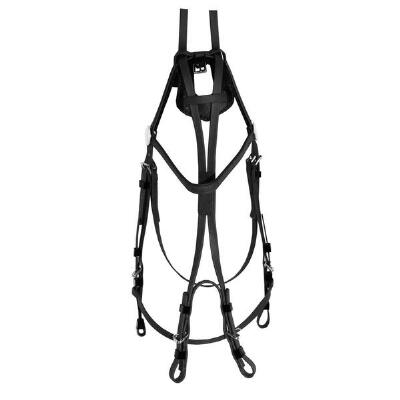 Open Bridle Beta