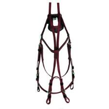 Open Bridle Beta - TB