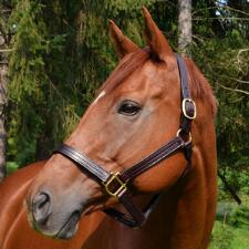 Thoroughbred Style Leather Halter  - TB