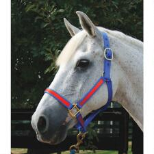 Nylon Two-Tone Halter Thoroughbred