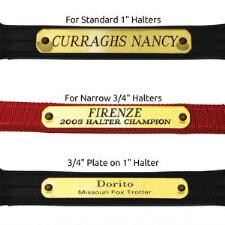 Engraved Nameplate for Halters Up to 2 lines of text