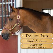 Engraved Nameplate for Halters 1 Inch Brass - TB