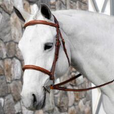Beval Conquer English Hunter Bridle - TB