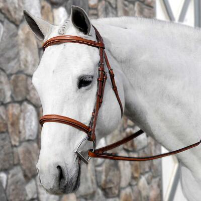 Beval Conquer English Hunter Bridle