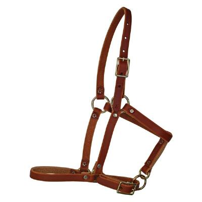 Berlin Leather Riveted Foal Halter