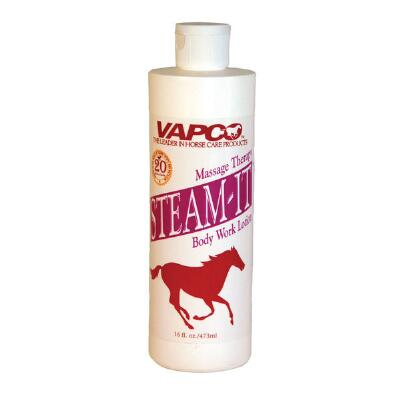 Vapco Steam It 16 oz
