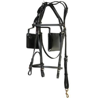 Walsh Blind Beta Bridle