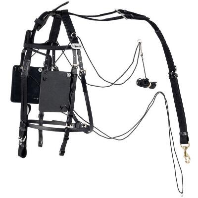 Walsh Pull-Up Pull-Down Bridle