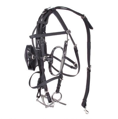 Walsh Telescopic Bridle