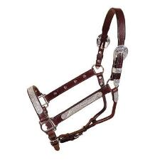 Tory Yearling Pecos Bill Silver Show Halter - TB