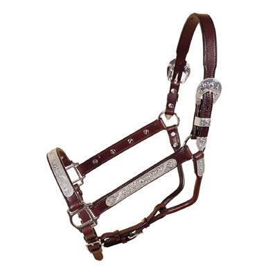 Yearling Pecos Bill Silver Show Halter