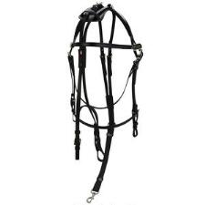 Walsh Open Bridle Pcn - TB