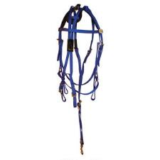 Walsh Open Bridle Colored All Nylon