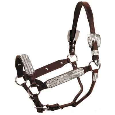 Tory Morristown Congress Style Show Halter