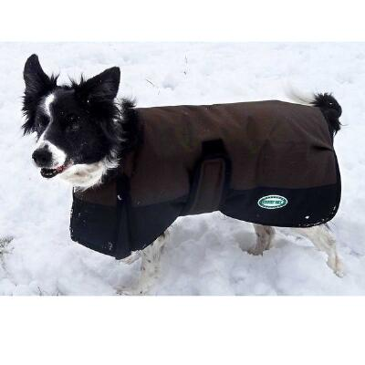 Dog Blanket 600D Waterproof with Nylon Lining