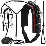 Walsh 1600 Race Harness Complete - TB