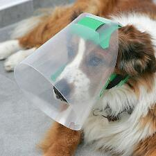 Novaguard Recovery Collar Canine