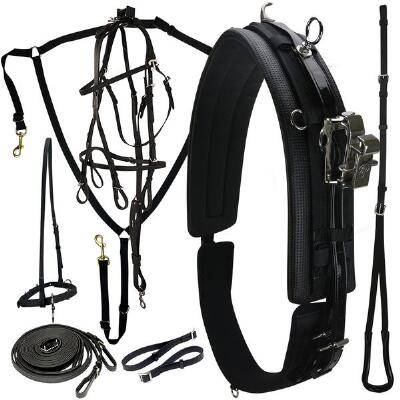 Protecto Ultra Lite Race Deluxe Harness