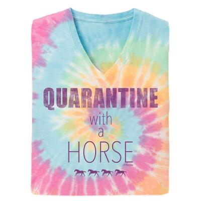 Stirrups Quarantine with a Horse Short Sleeve Ladies Tee