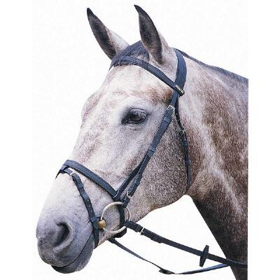 Wintec Synthetic English Bridle with Flash