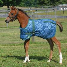 Country Pride 420D Adjustable Foal Blanket - TB