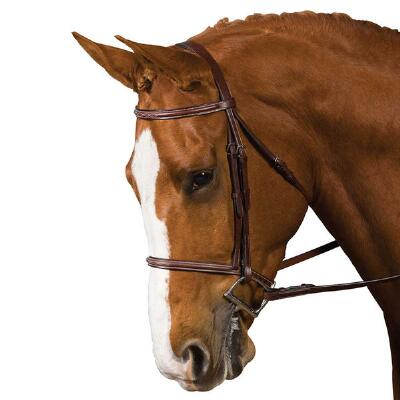 Collegiate Raised Fancy Stitch Pony Bridle