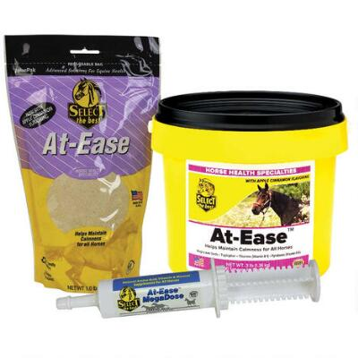 At Ease MegaDose Paste 60 cc