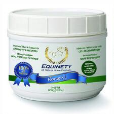 Equinety Horse XL 600gm - TB